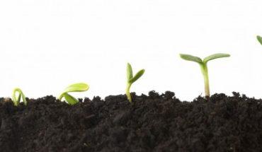 Investimento, risparmio e speculazione